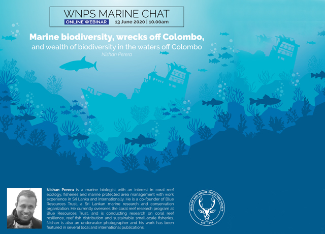 Marine Chat