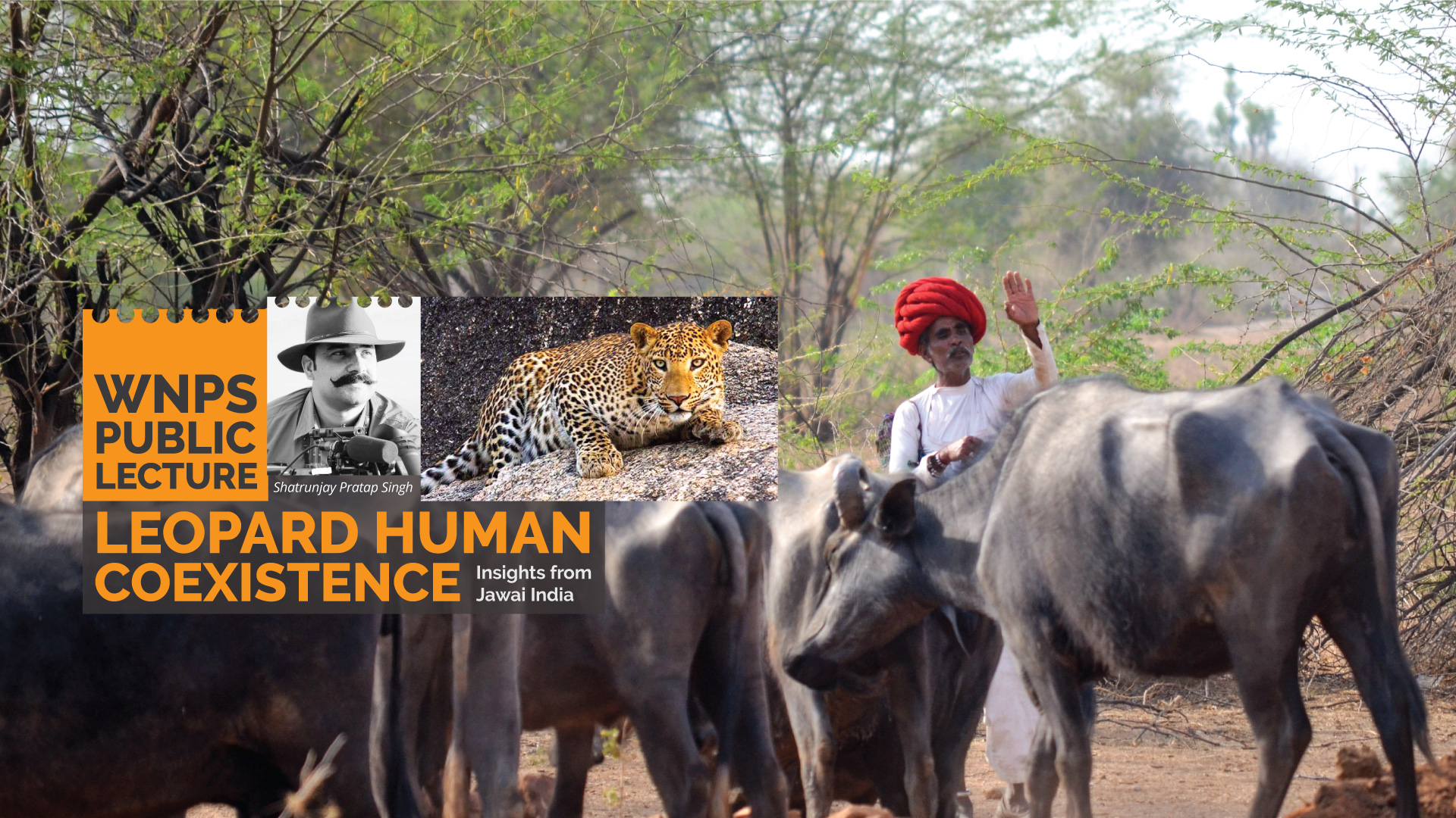 Leopard Human Coexistence