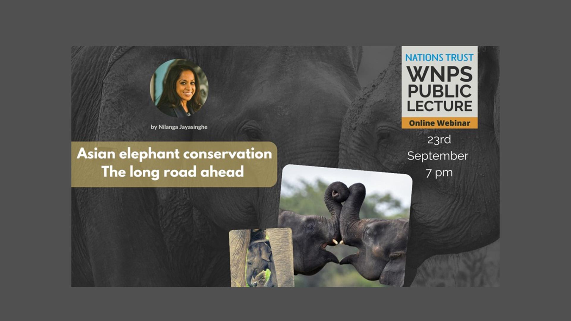 Asian Elephant Conservation