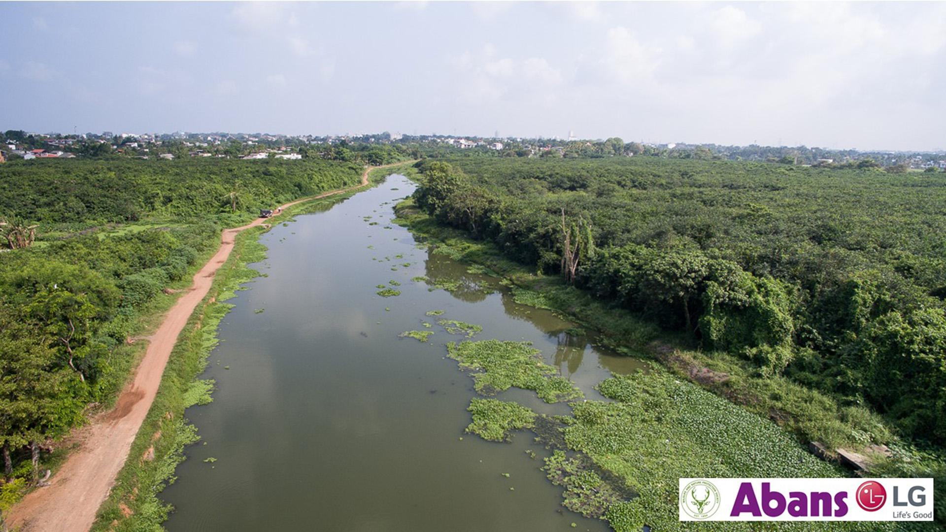 Bellanwila-attidiya wetland